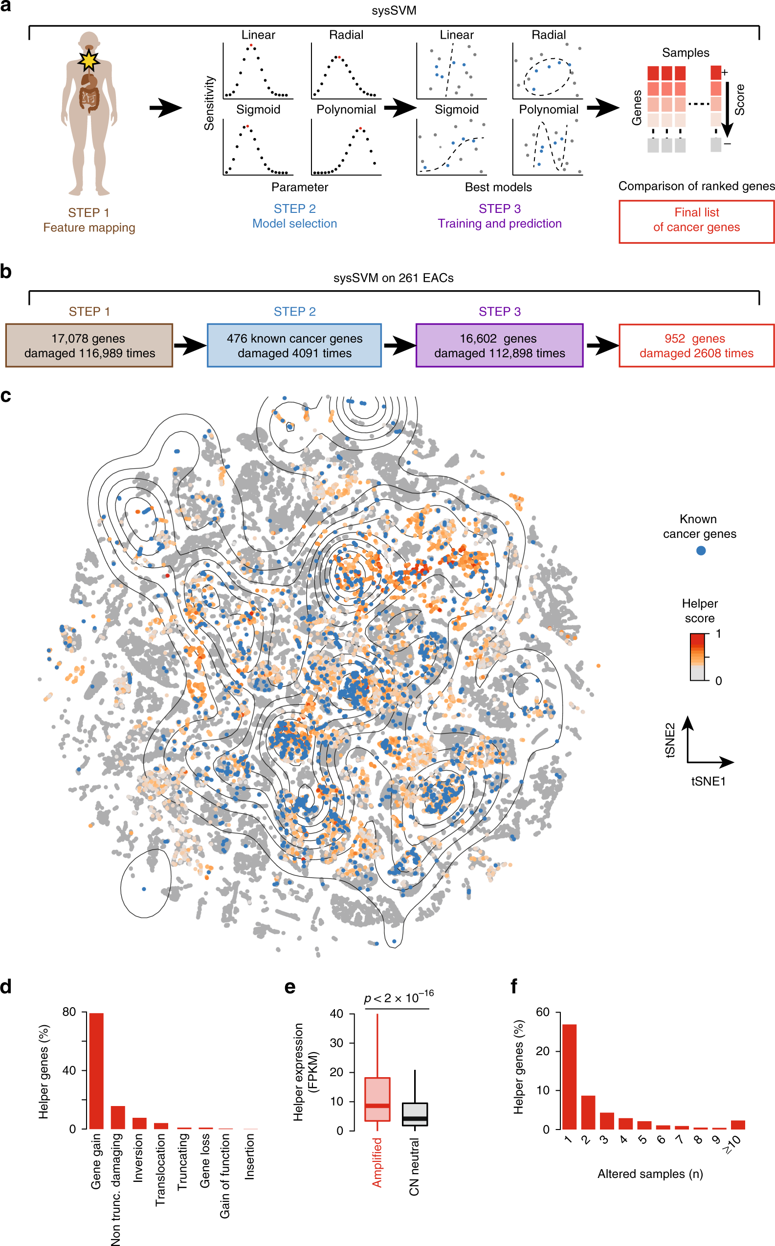 Cancer Gene Twice As Likely To Be >> Patient Specific Cancer Genes Contribute To Recurrently