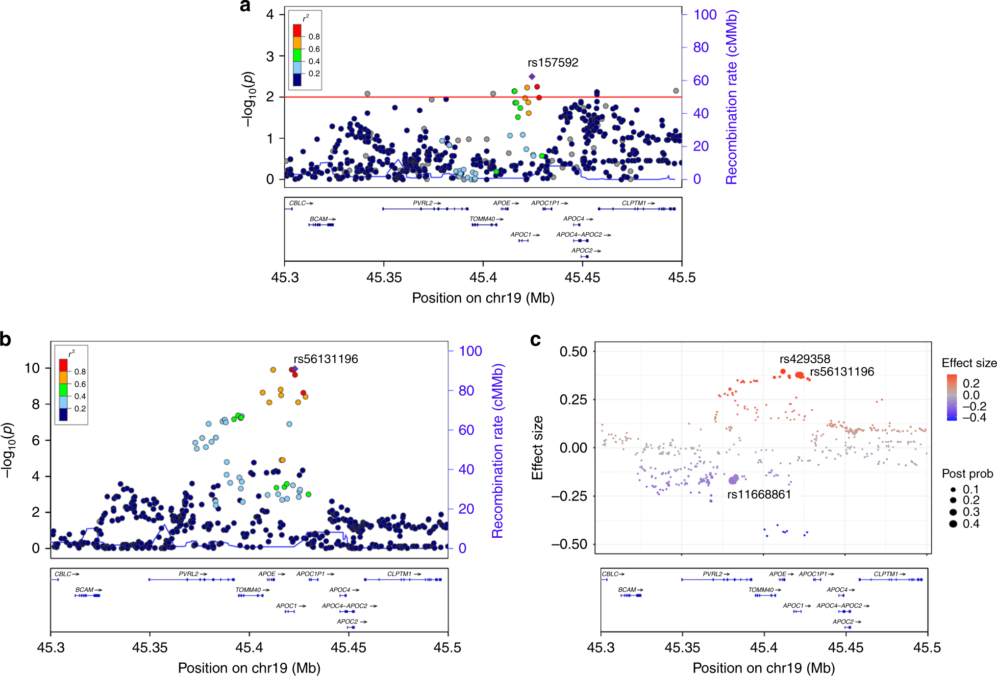 Non-coding variability at the APOE locus contributes to the