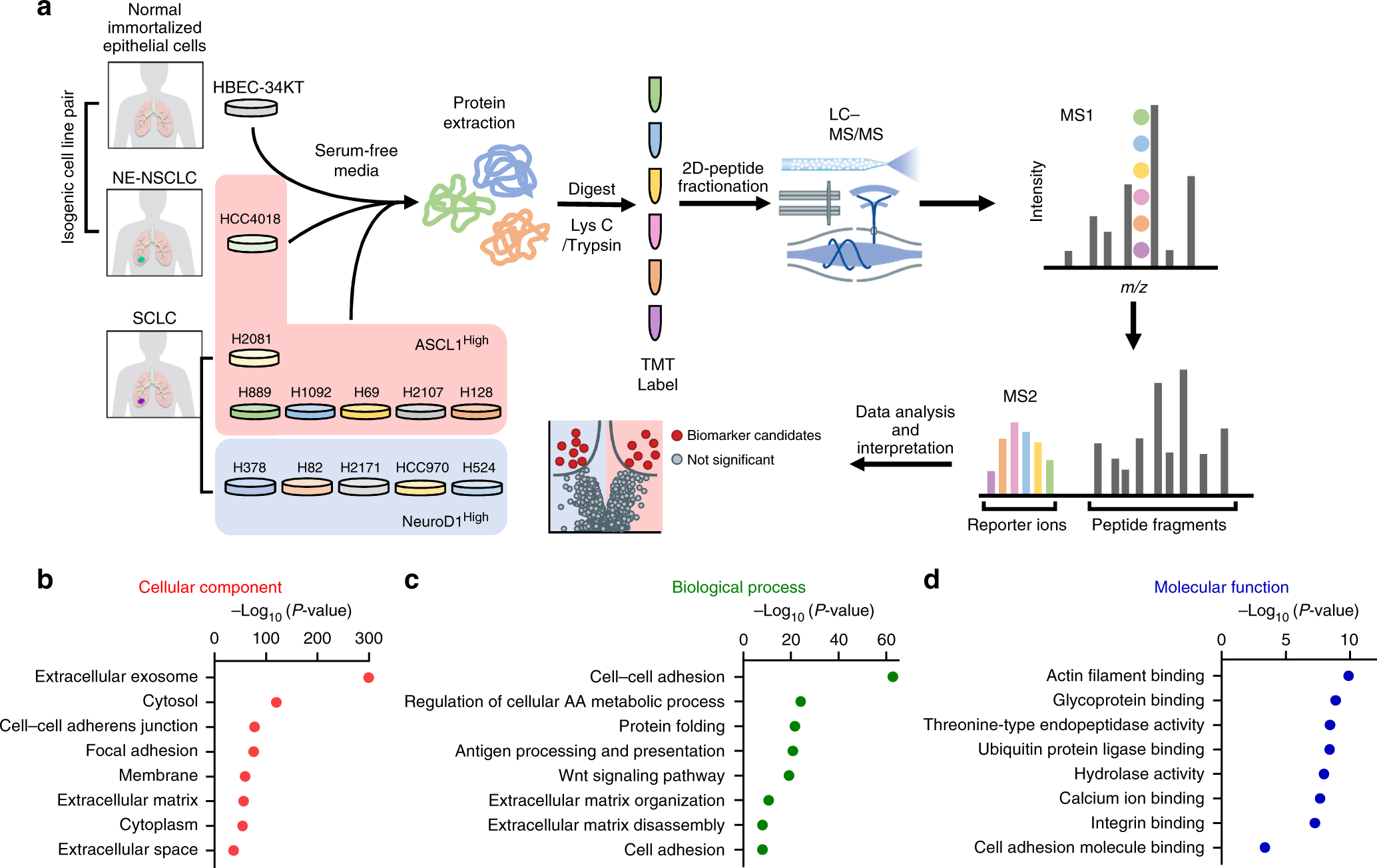Subtype-specific secretomic characterization of pulmonary