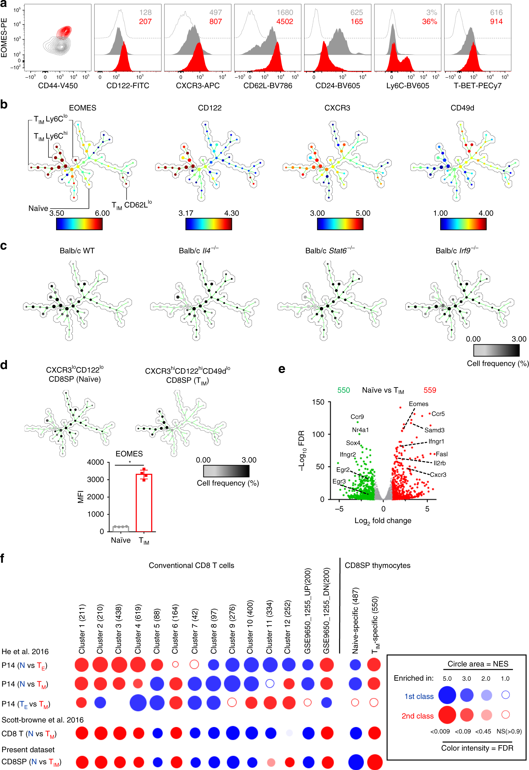 EOMES interacts with RUNX3 and BRG1 to promote innate memory