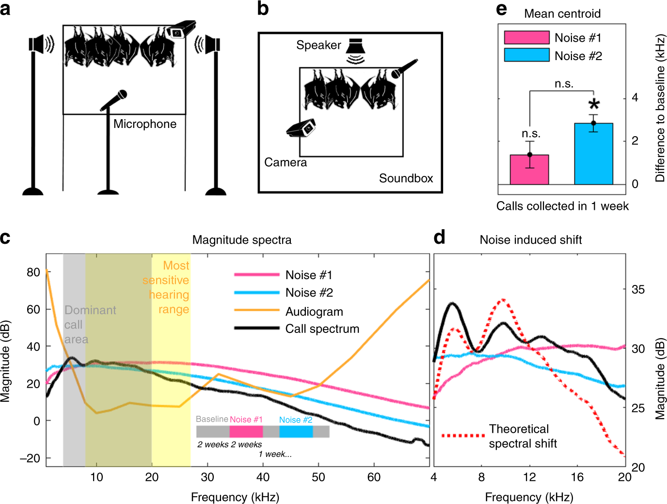Long-term and persistent vocal plasticity in adult bats