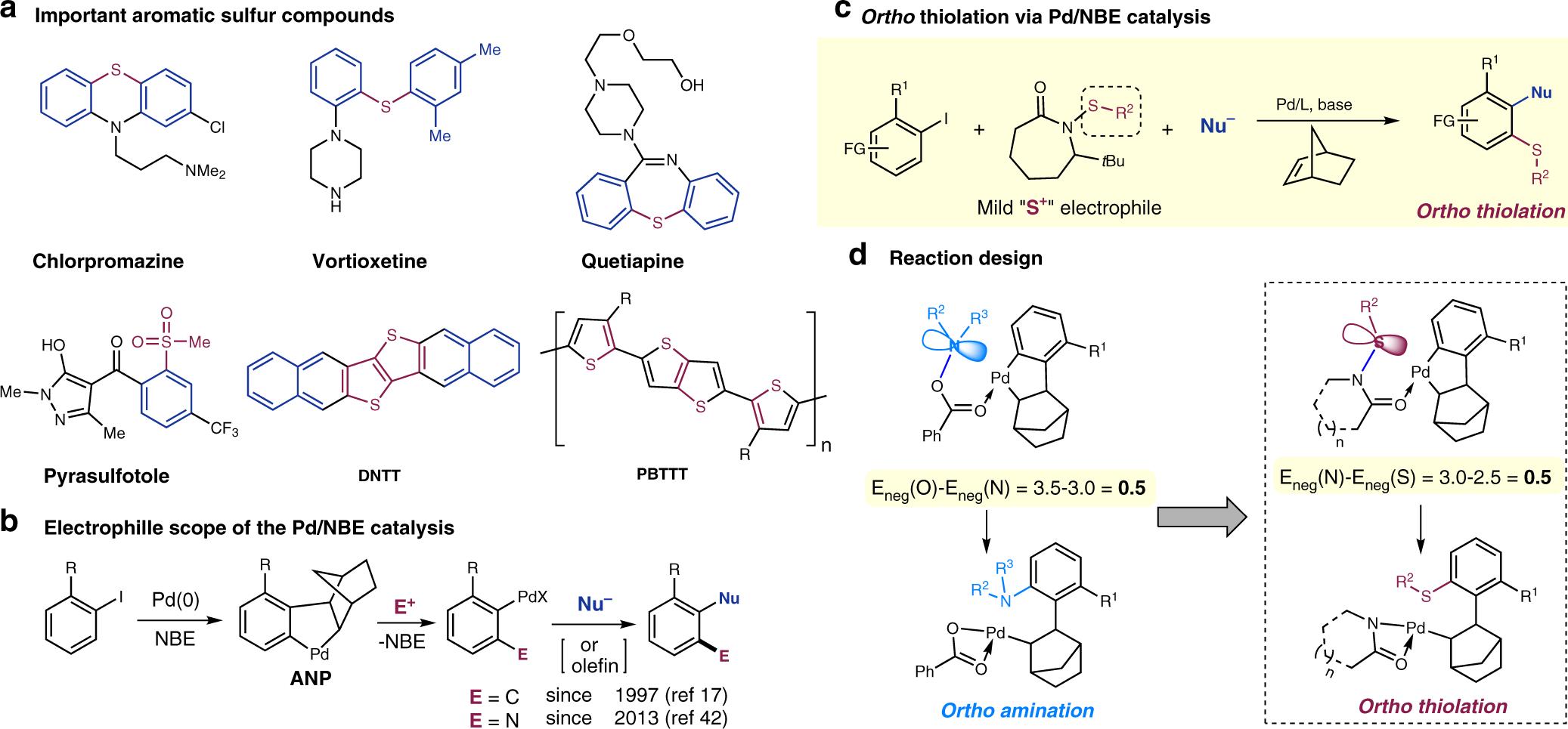 Kod kuponu świetna jakość szeroki zasięg Sulfenamide-enabled ortho thiolation of aryl iodides via ...