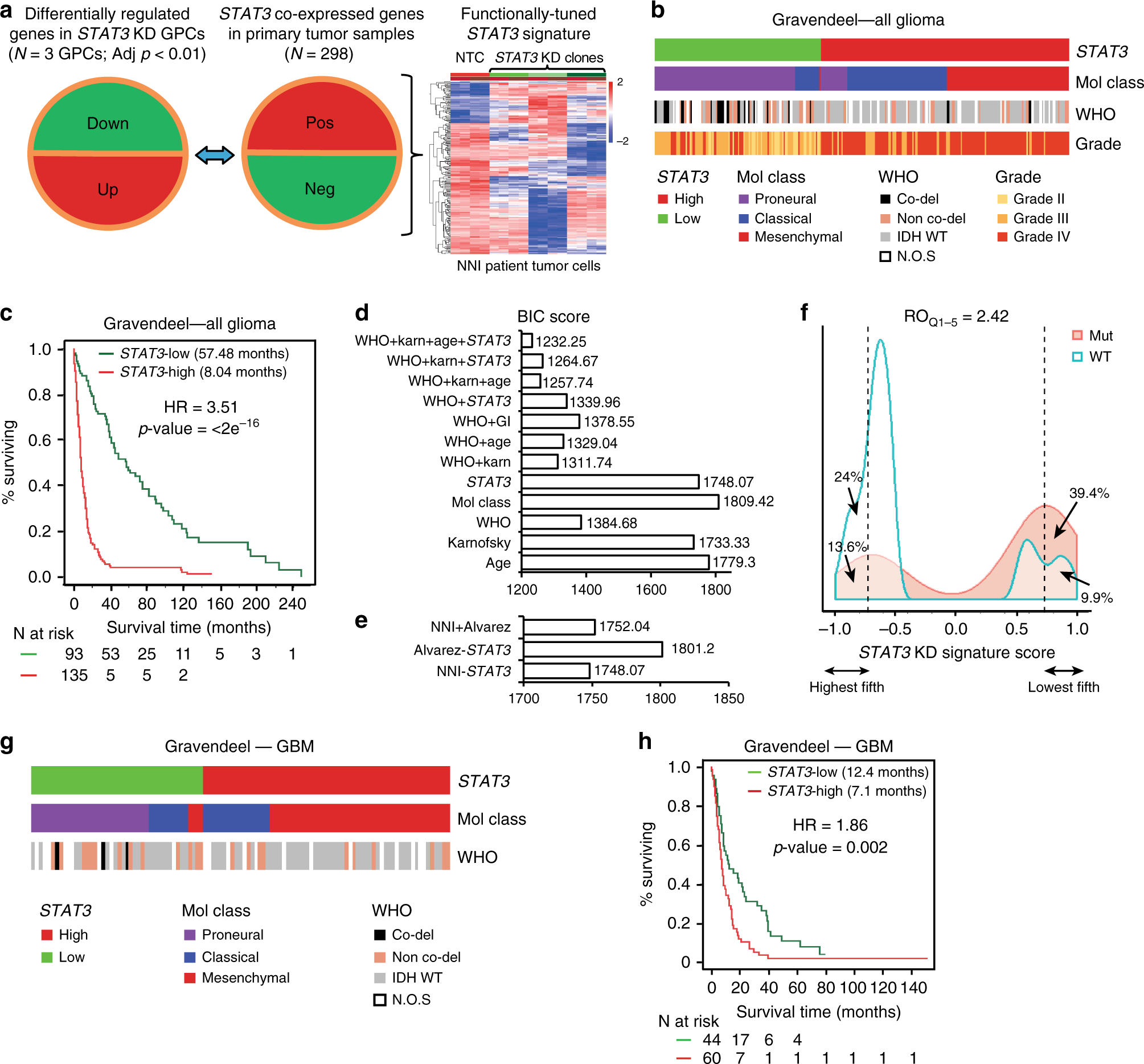 A STAT3-based gene signature stratifies glioma patients for
