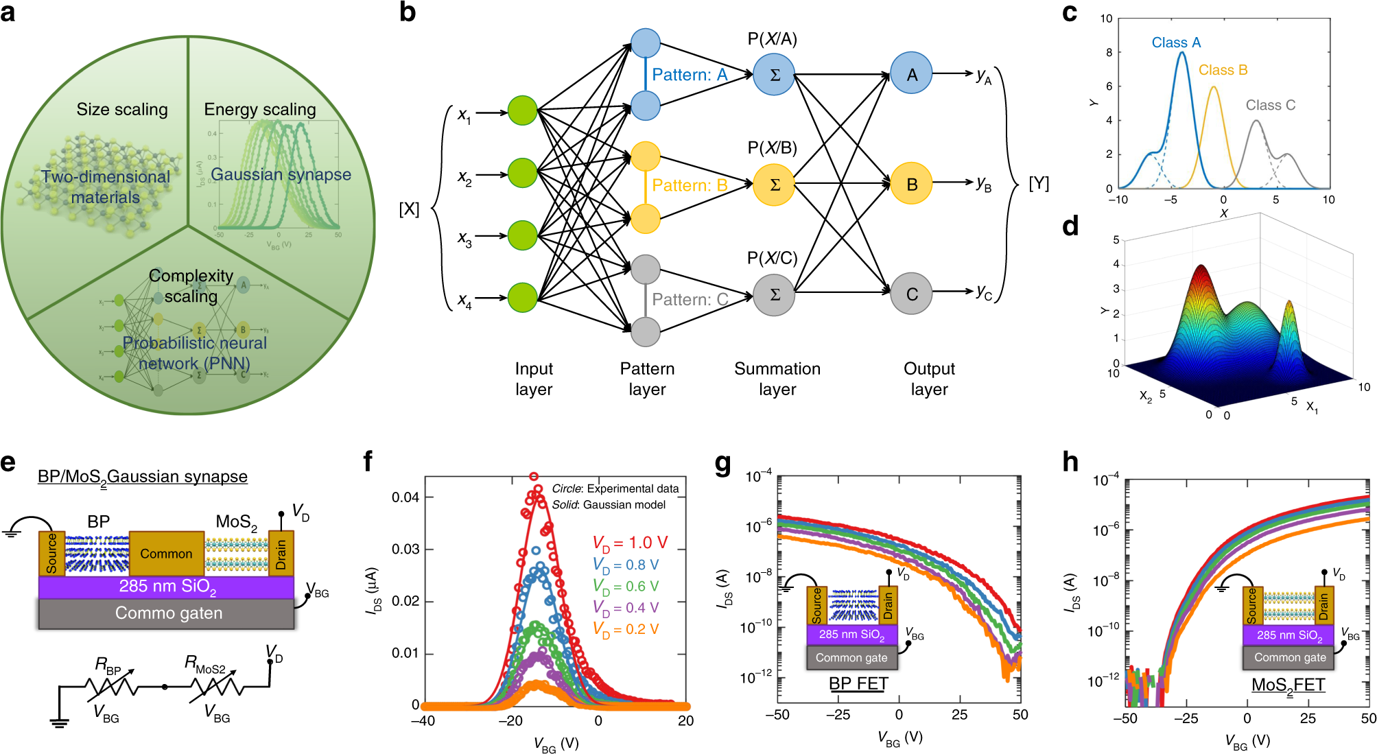 Gaussian synapses for probabilistic neural networks | Nature