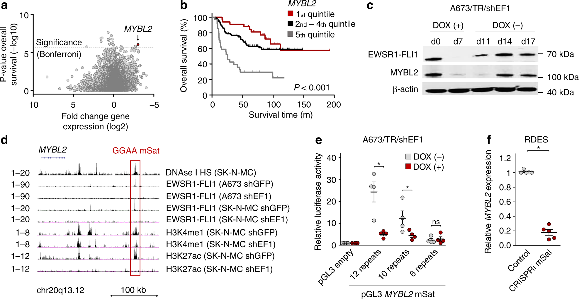 Cooperation of cancer drivers with regulatory germline