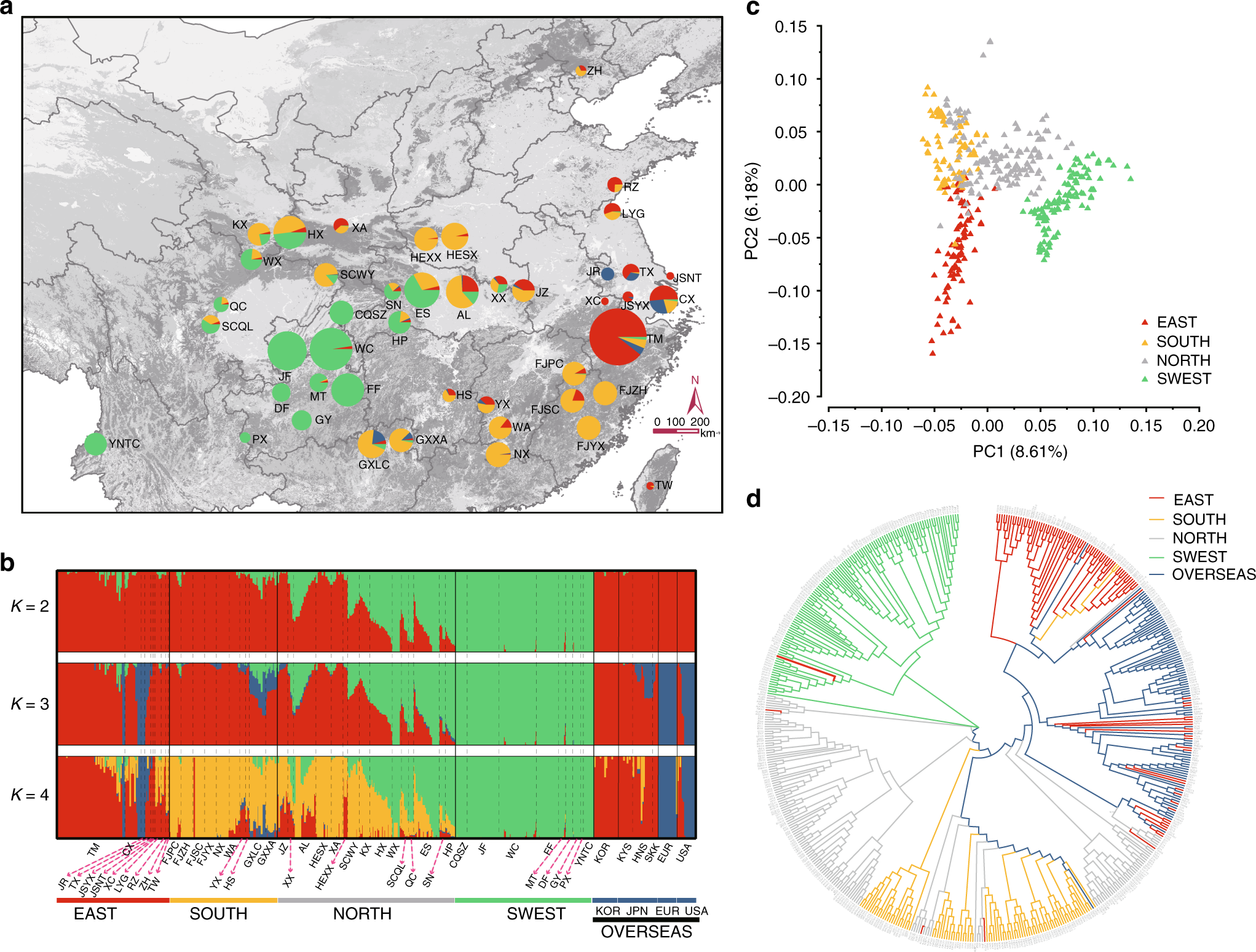 Resequencing 545 Ginkgo Genomes Across The World Reveals The
