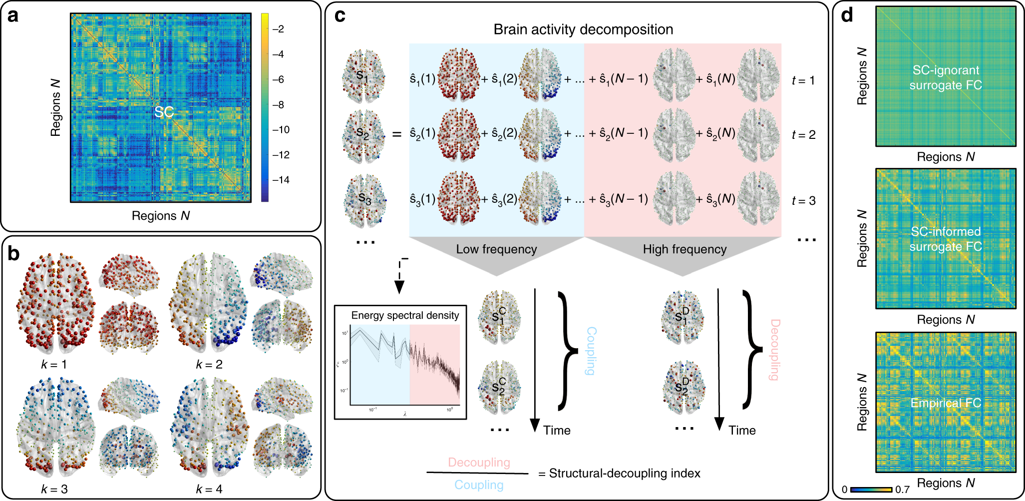 Decoupling Of Brain Function From Structure Reveals Regional