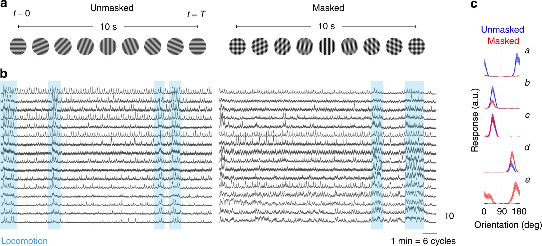 The Geometry Of Masking In Neural Populations Nature