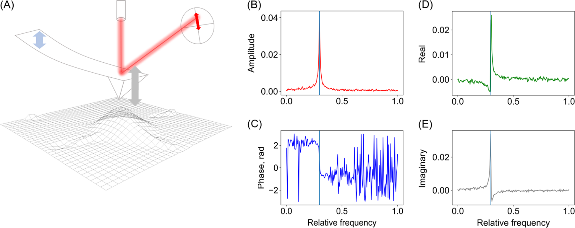 Deep neural networks for understanding noisy data applied to