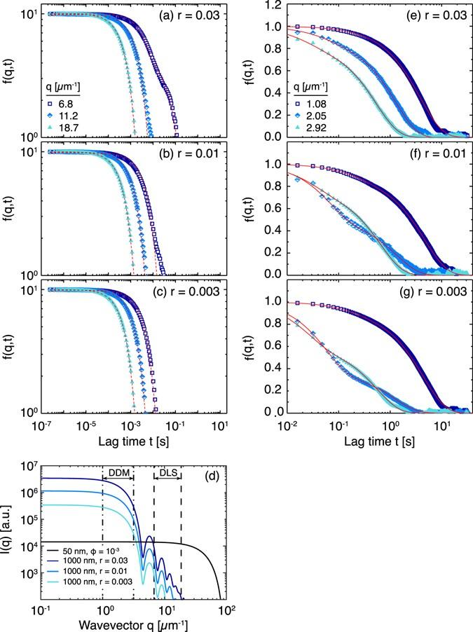 Differential dynamic microscopy of bidisperse colloidal