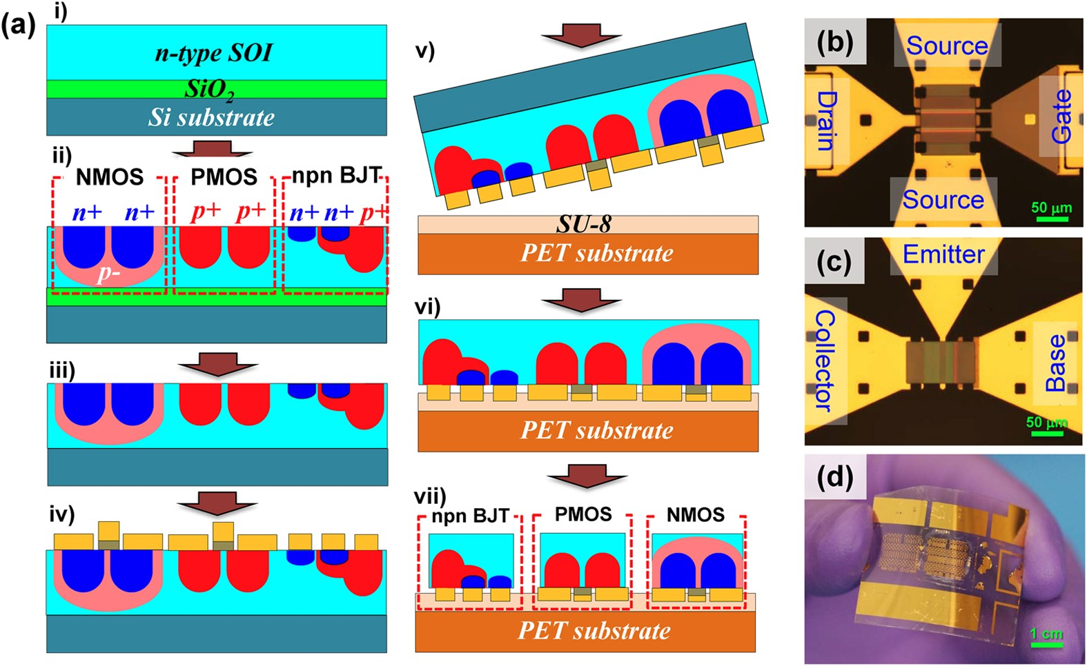 High Performance Flexible Bicmos Electronics Based On Single Crystal Oscillator With Cmos Inverter Si Nanomembrane Npj