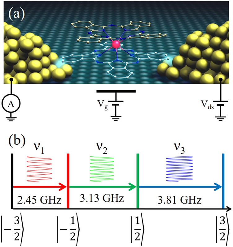 Generalized Ramsey interferometry explored with a single nuclear