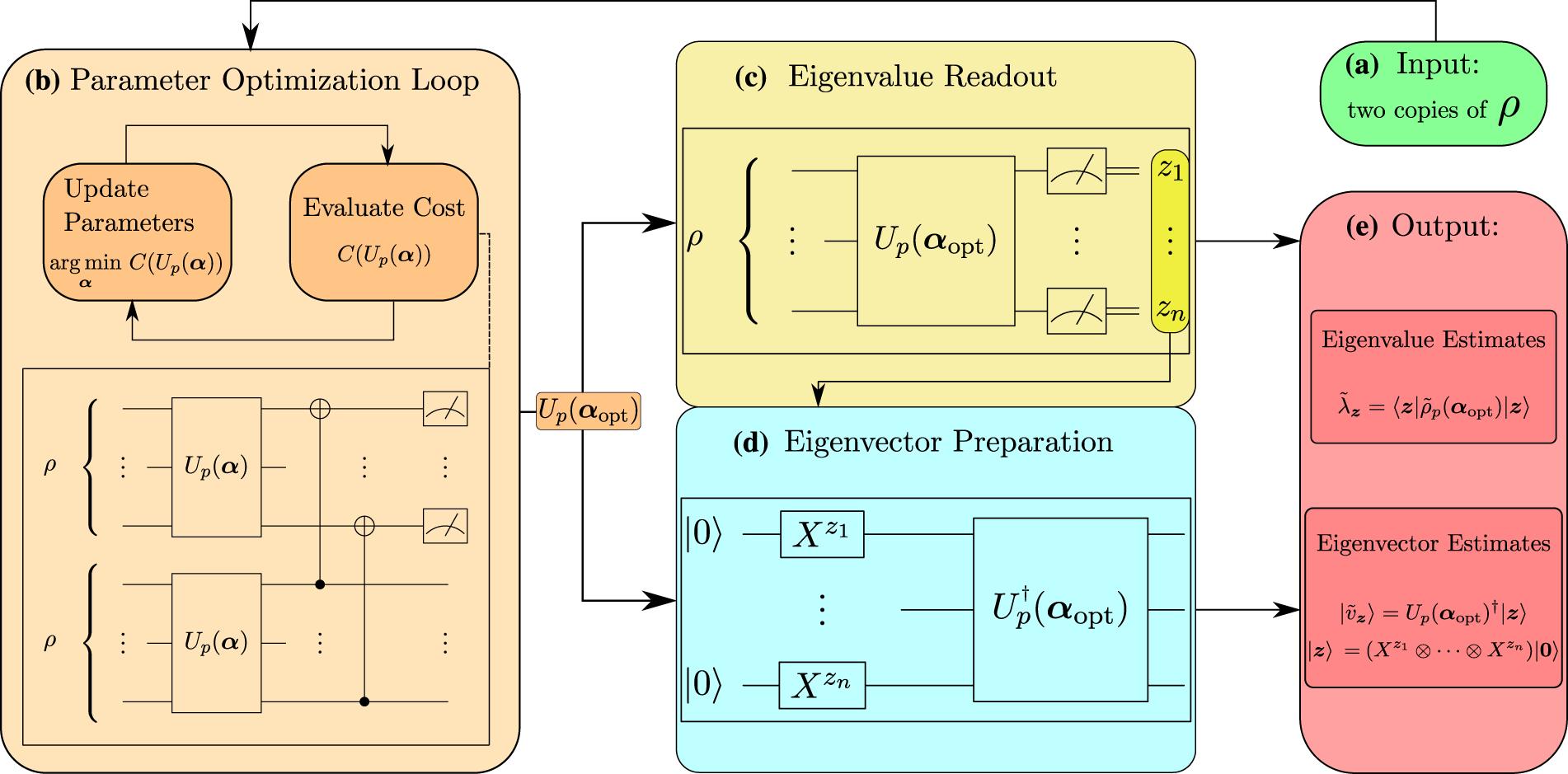 Variational quantum state diagonalization | npj Quantum