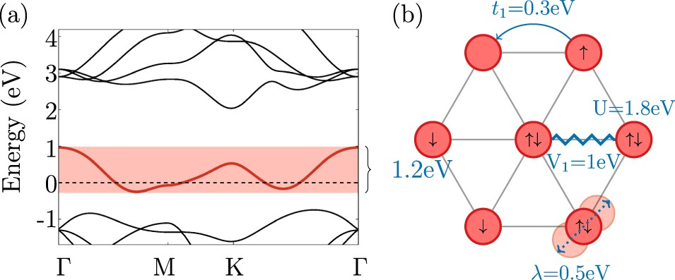 Competing Coulomb and electron–phonon interactions in NbS 2