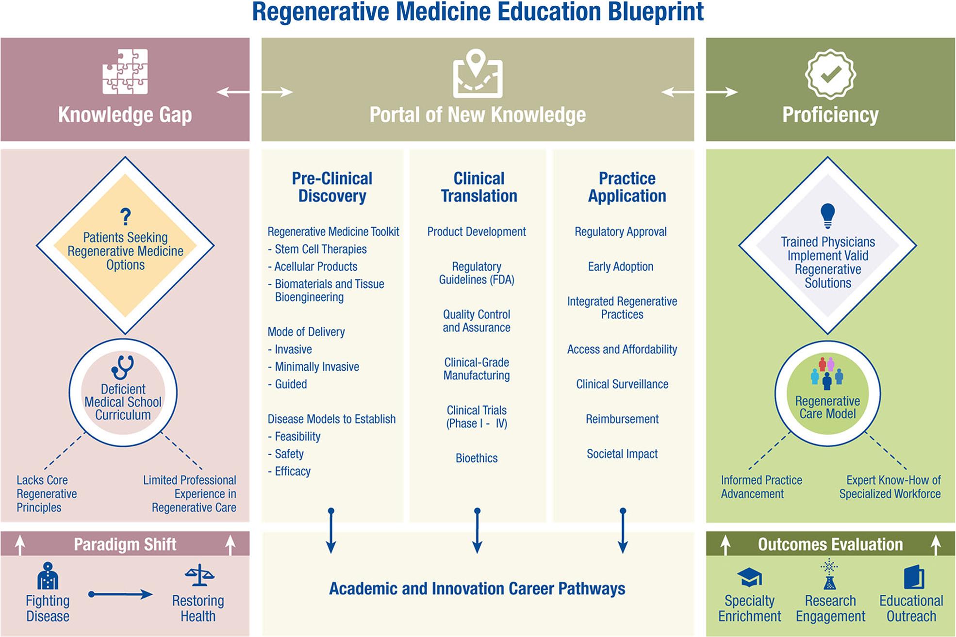 Medical School Curriculum