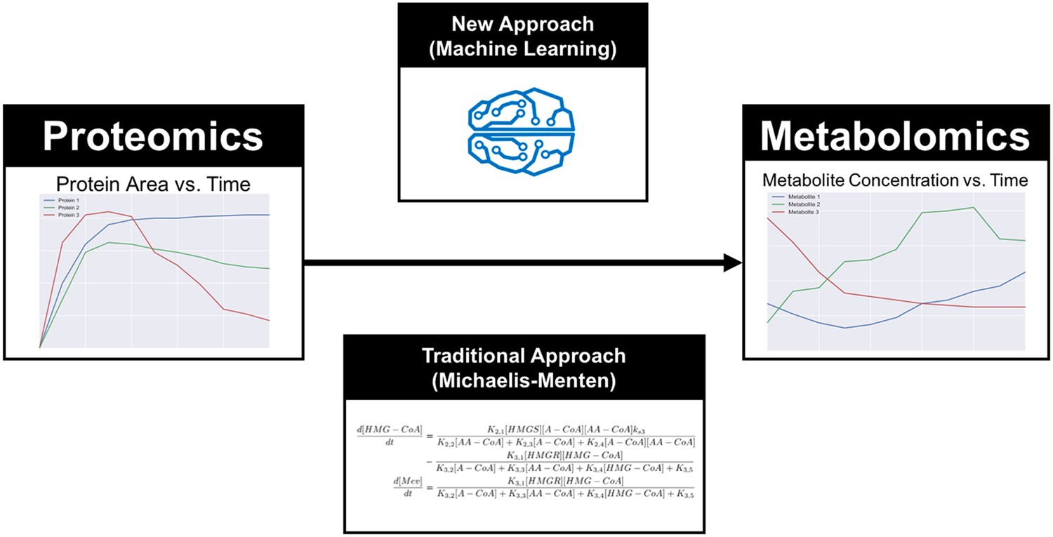 A machine learning approach to predict metabolic pathway dynamics