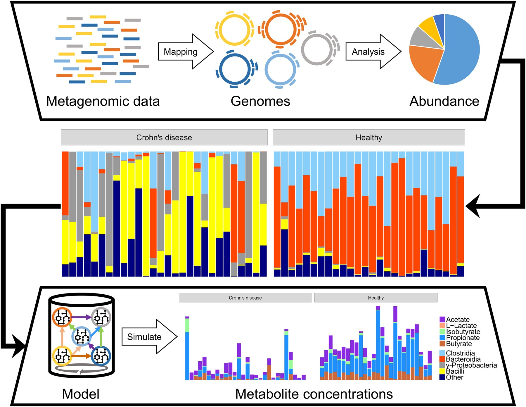 From metagenomic data to personalized in silico microbiotas
