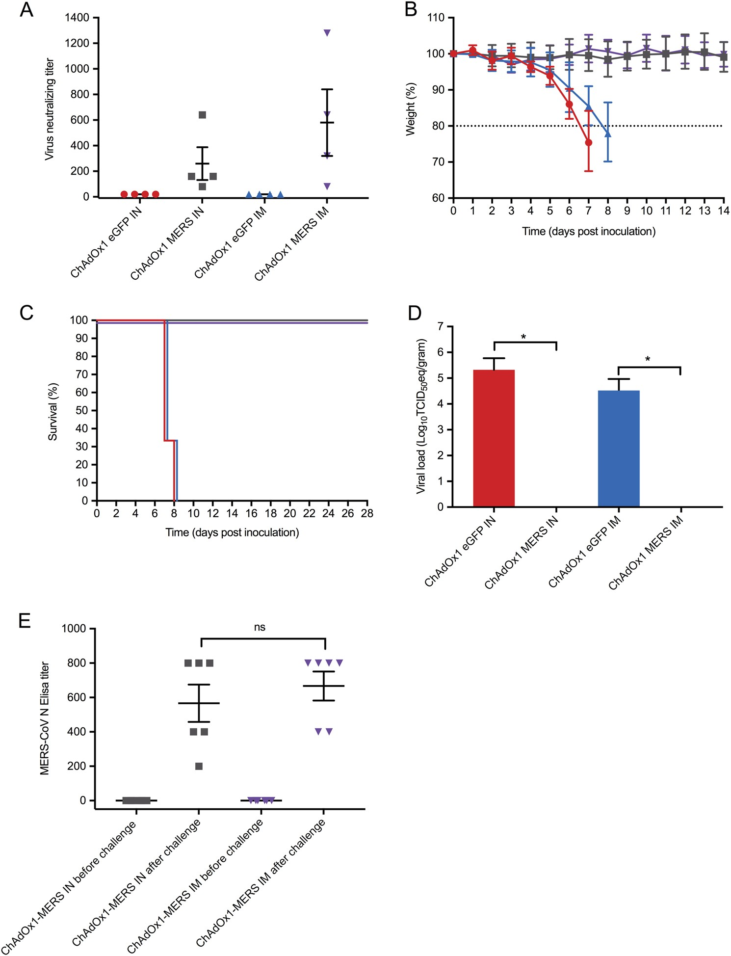 Protective efficacy of a novel simian adenovirus vaccine