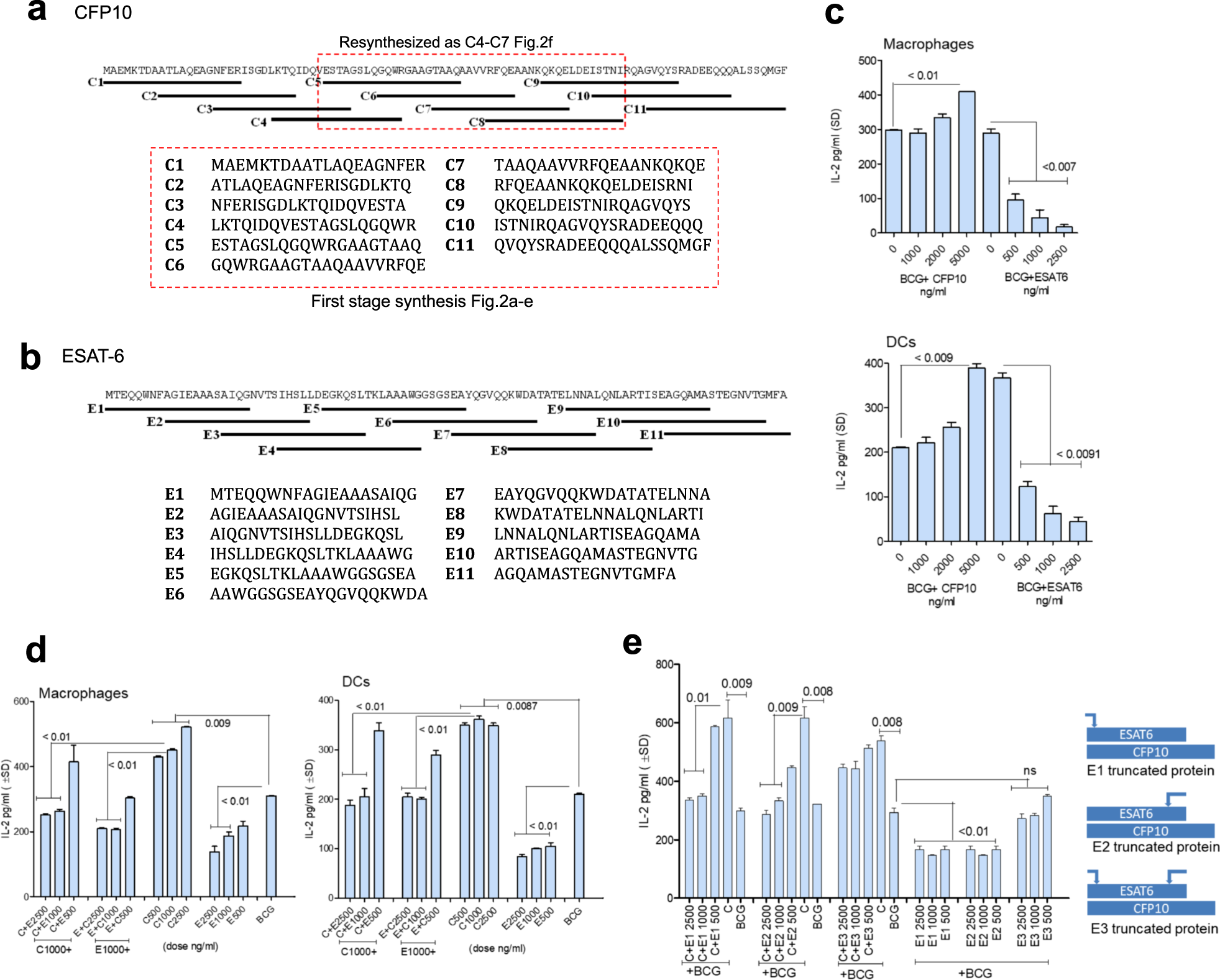 An autophagy-inducing and TLR-2 activating BCG vaccine