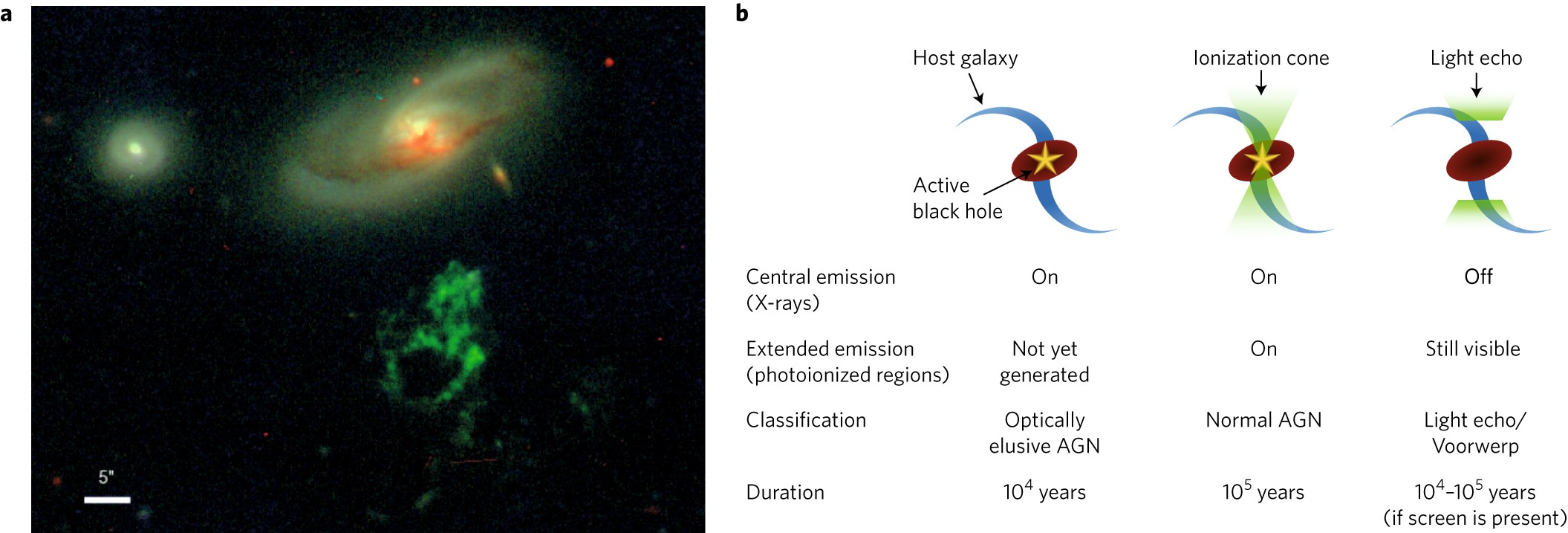 Archaeology of active galaxies across the electromagnetic