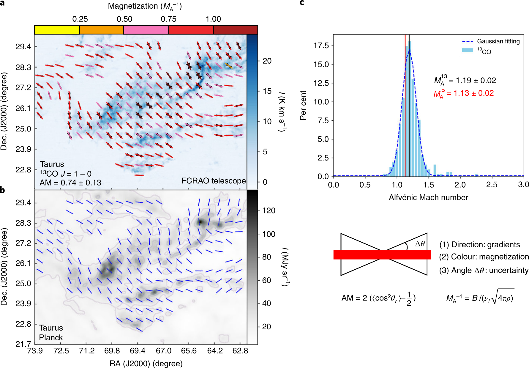 Magnetic field morphology in interstellar clouds with the velocity