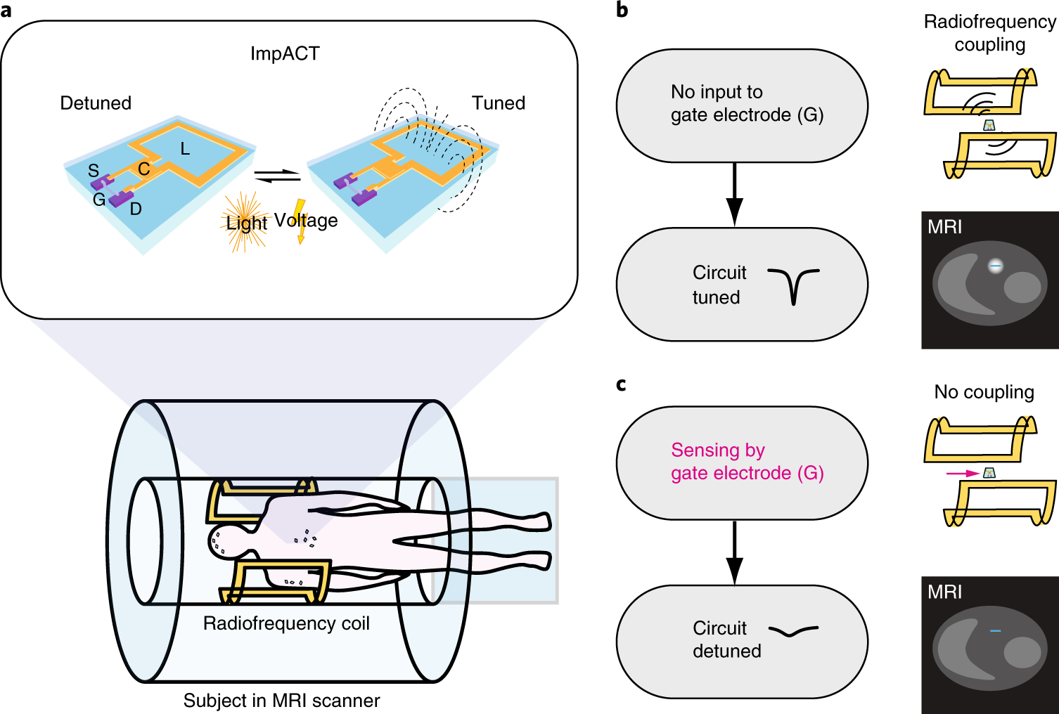 Wireless Resonant Circuits For The Minimally Invasive Sensing Of If Circuit Radio Frequency Npn Amplifier Biophysical Processes In Magnetic Resonance Imaging Nature Biomedical Engineering