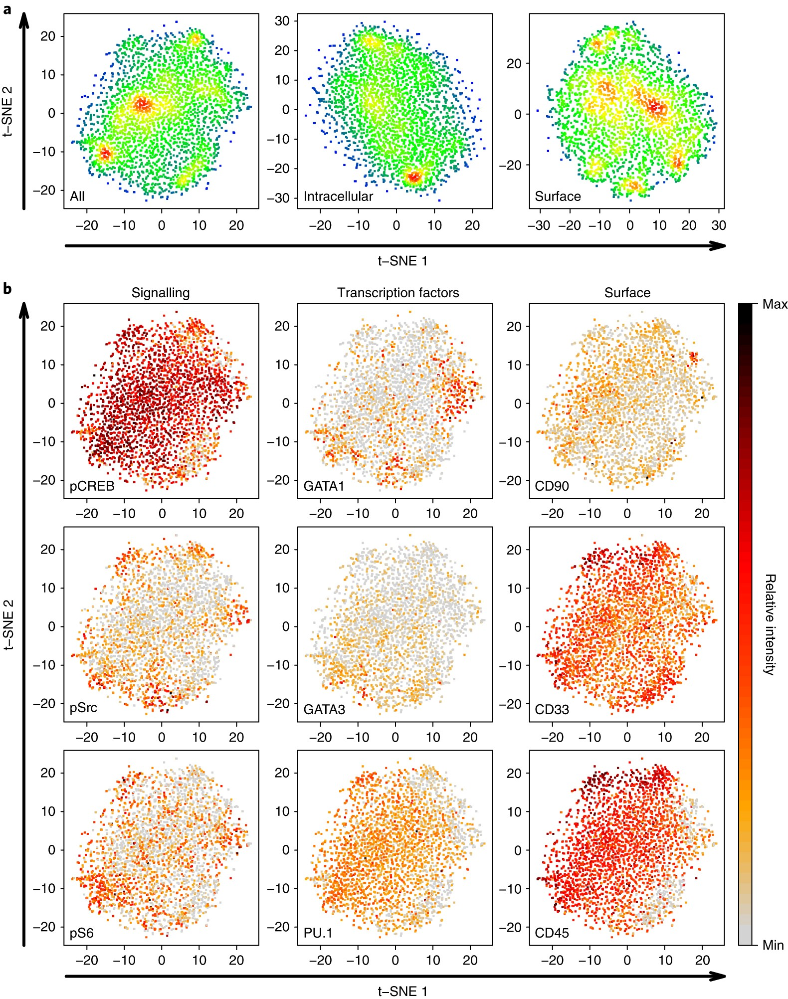 Single Cell Analysis Identifies A Cd33 Subset Of Human Cord Blood Cells With High Regenerative Potential Nature Cell Biology
