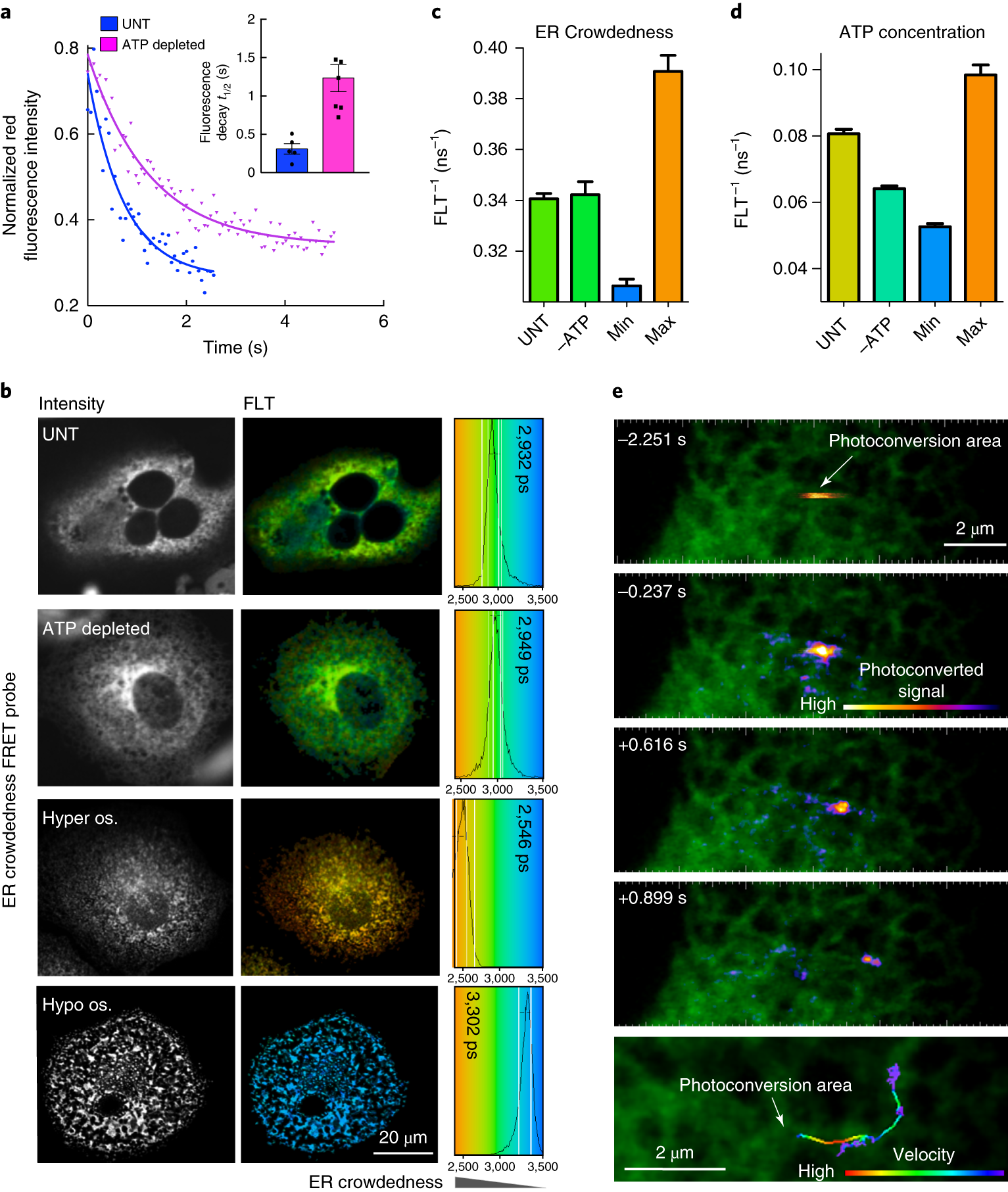 Single Particle Trajectories Reveal Active Endoplasmic Reticulum Figure 5 Is The 2 Led Alternating Flasher Circuit Using Two Luminal Flow Nature Cell Biology