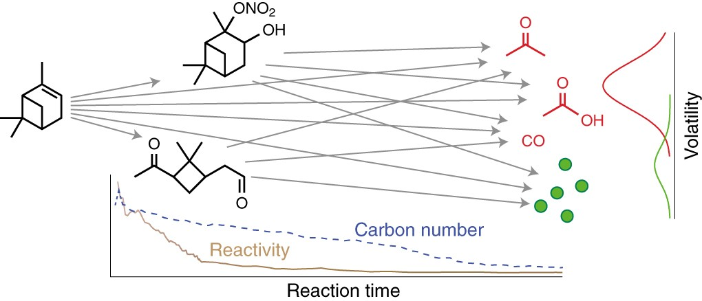 Chemical evolution of atmospheric organic carbon over