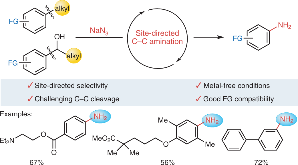 From alkylarenes to anilines via site-directed carbon–carbon