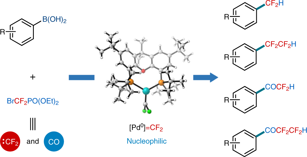 Controllable catalytic difluorocarbene transfer enables access to dive