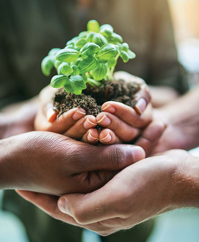 Sustainable development through climate action
