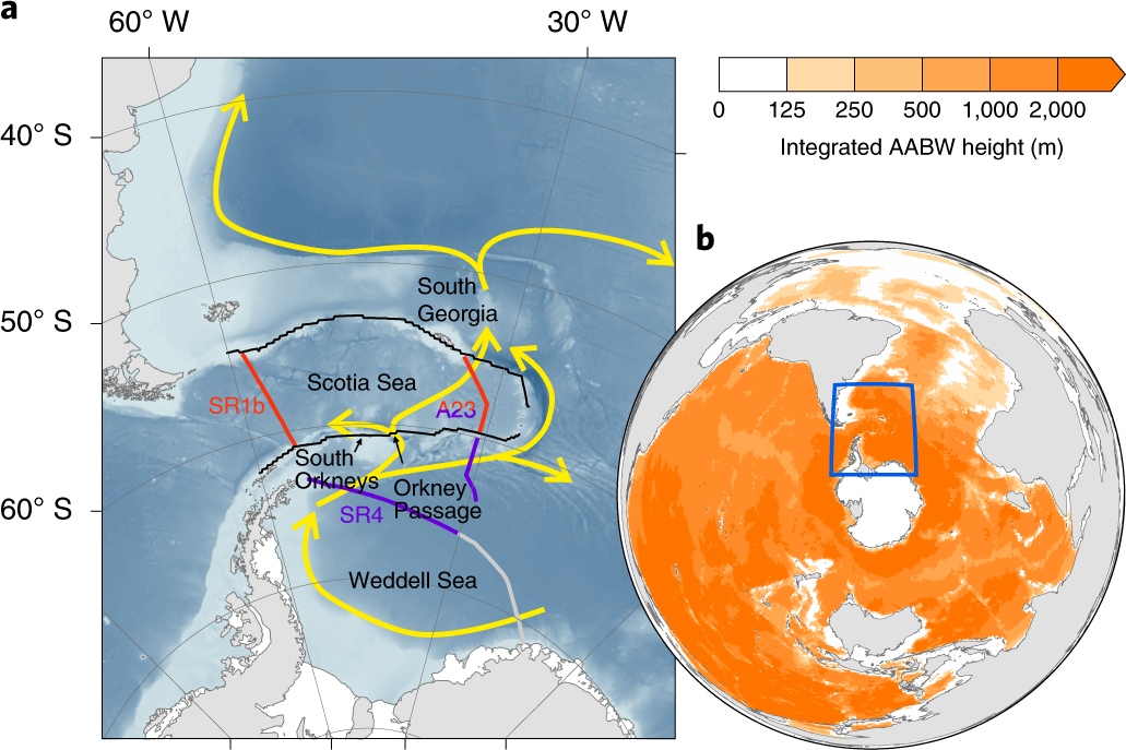 Stabilization of dense Antarctic water supply to the Atlantic Ocean ov