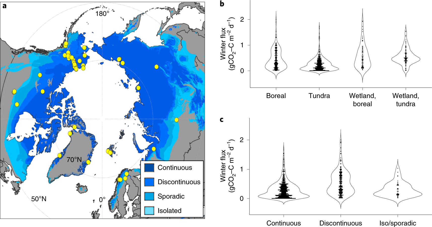 Large loss of CO 2 in winter observed across the northern permafrost r