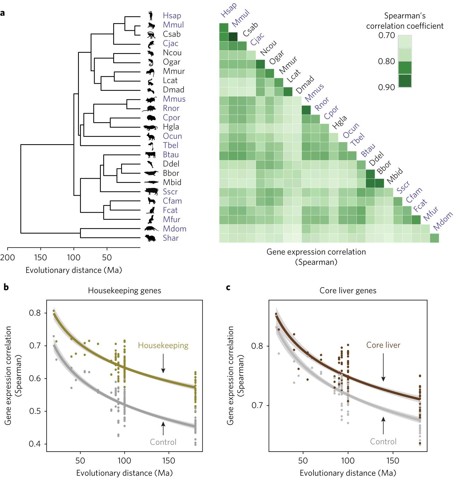 Gene Expression Patterns May Underlie >> Complexity And Conservation Of Regulatory Landscapes Underlie