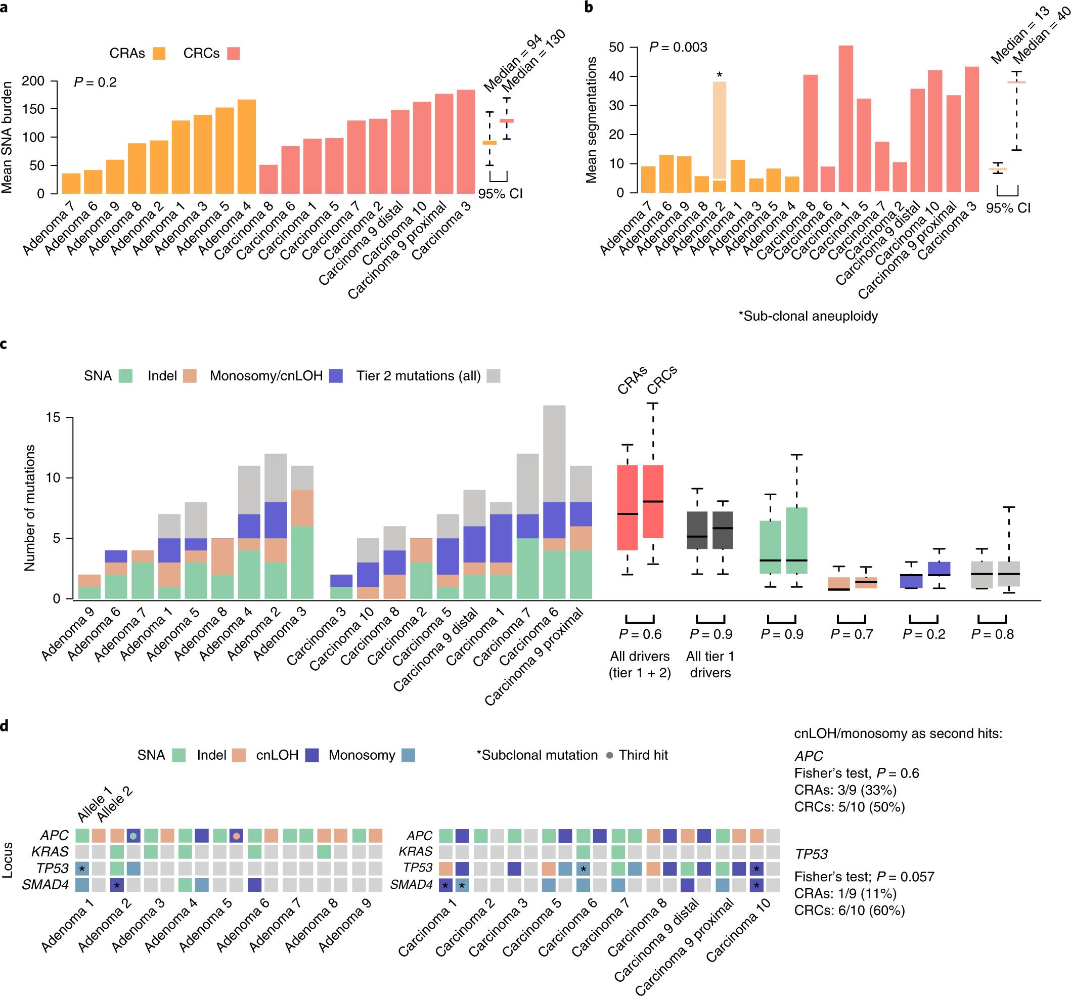 The Evolutionary Landscape Of Colorectal Tumorigenesis Nature
