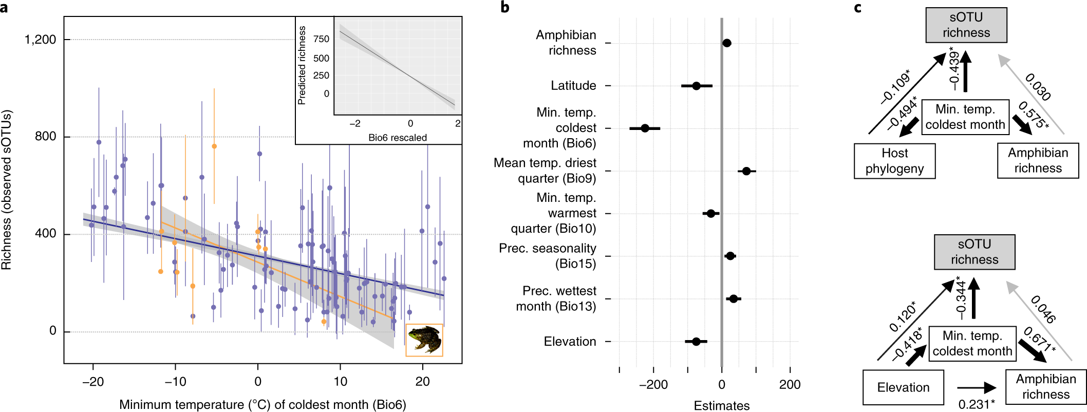 Community richness of amphibian skin bacteria correlates with bioclima
