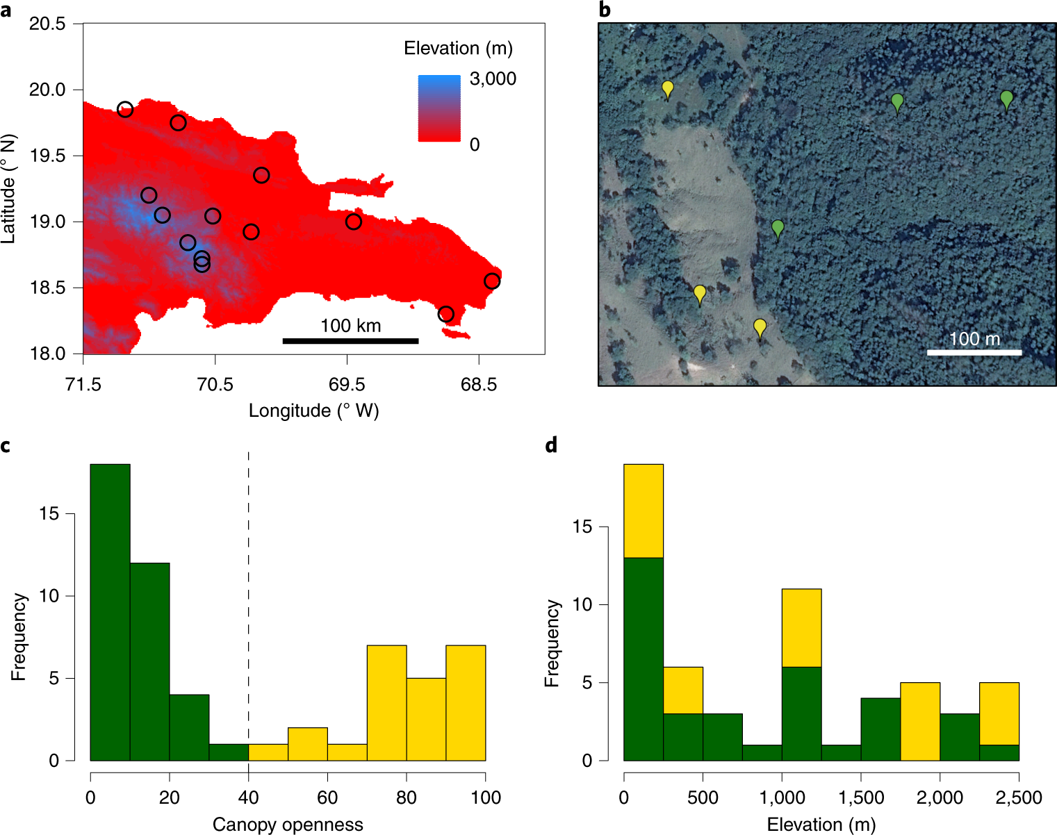 Elevation shapes the reassembly of Anthropocene lizard