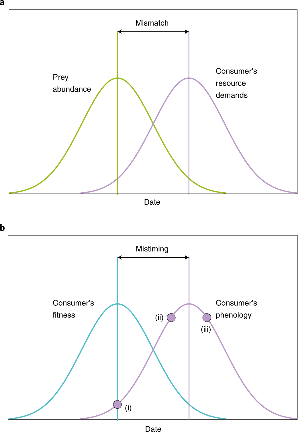 Evolutionary and demographic consequences of phenological