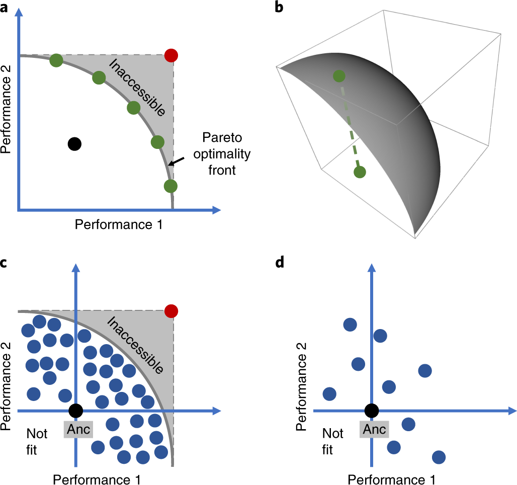 Single nucleotide mapping of trait space reveals Pareto fronts that co