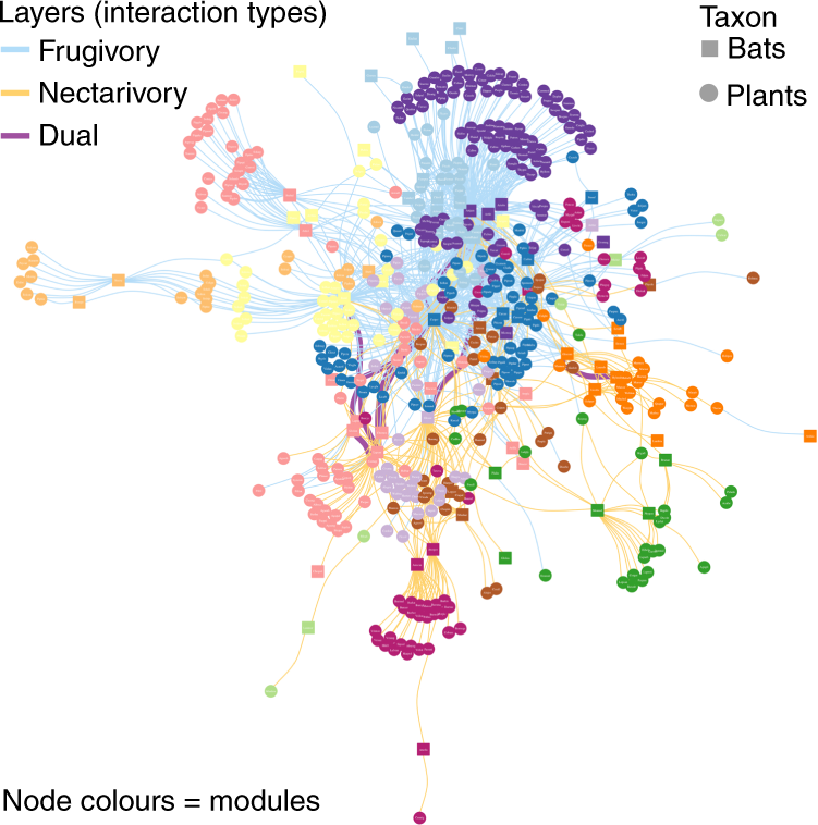 Insights into the assembly rules of a continent-wide multilayer networ