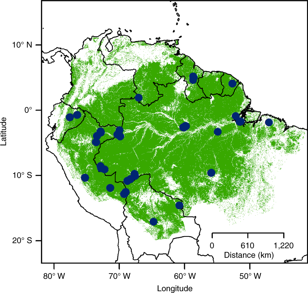 Evolutionary diversity is associated with wood productivity in Amazoni