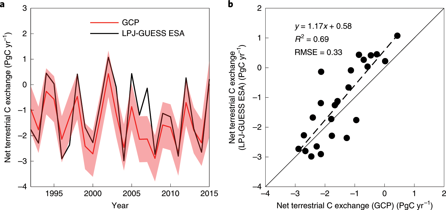 Recent divergence in the contributions of tropical and boreal forests