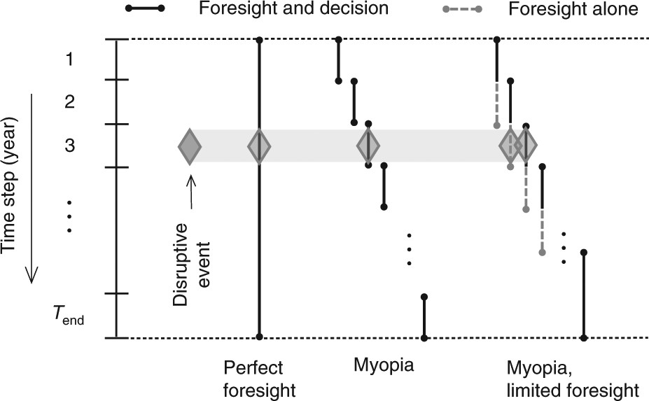 Impact of myopic decision-making and disruptive events in ... on