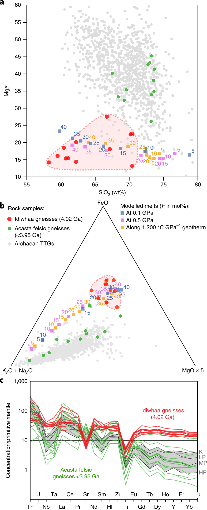 An impact melt origin for Earth's oldest known evolved rocks | Nature  Geoscience