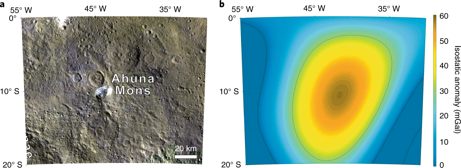 Slurry extrusion on Ceres from a convective mud-bearing mantle