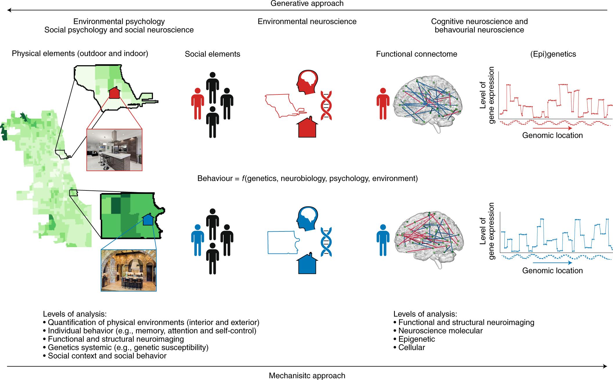 Neglecting Neuroscience Has Criminal >> The Promise Of Environmental Neuroscience Nature Human Behaviour
