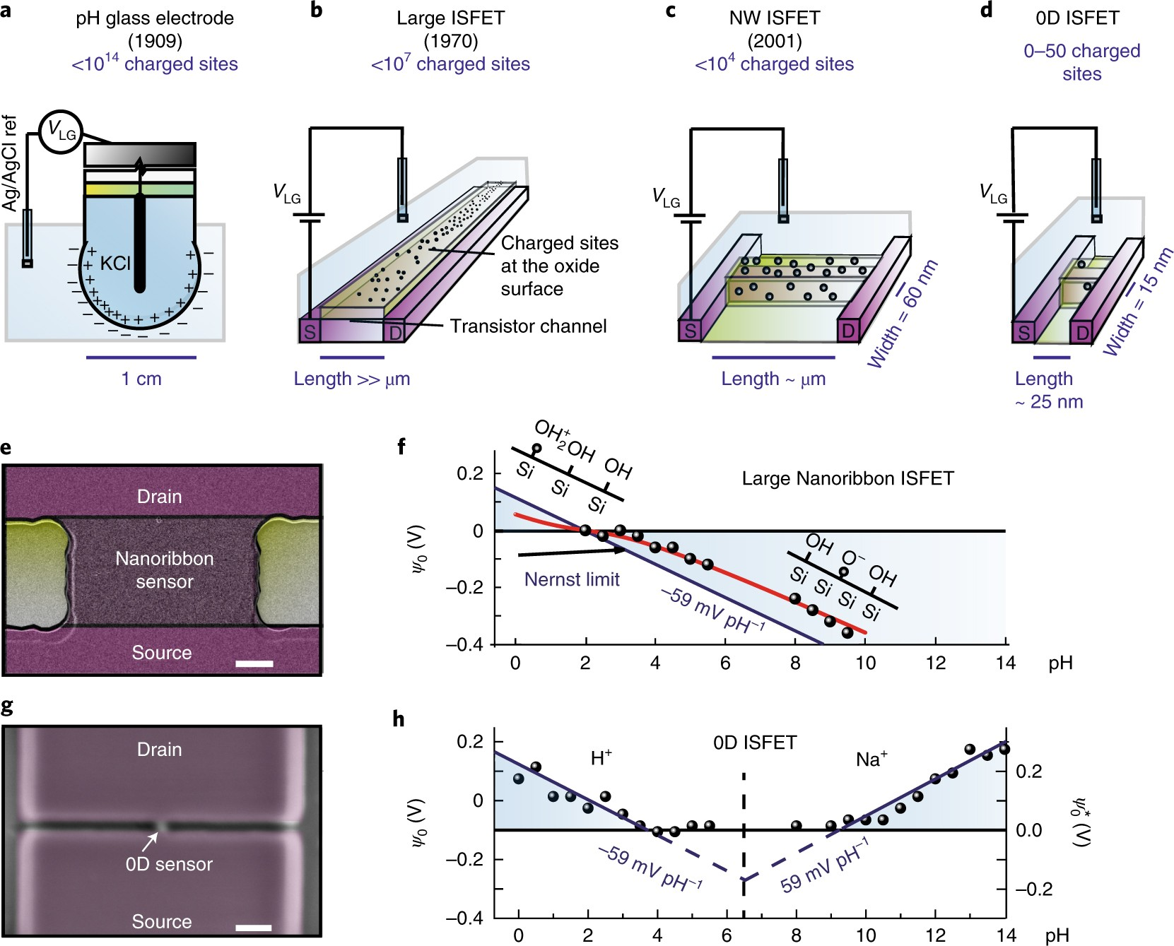 Selective Layer Free Blood Serum Ionogram Based On Ion Specific 0 59 Counter Circuit Diagram Interactions With A Nanotransistor Nature Materials