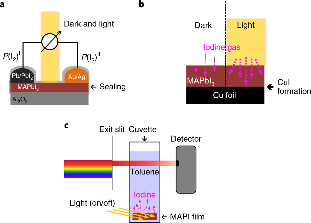 Large Tunable Photoeffect On Ion Conduction In Halide Perovskites