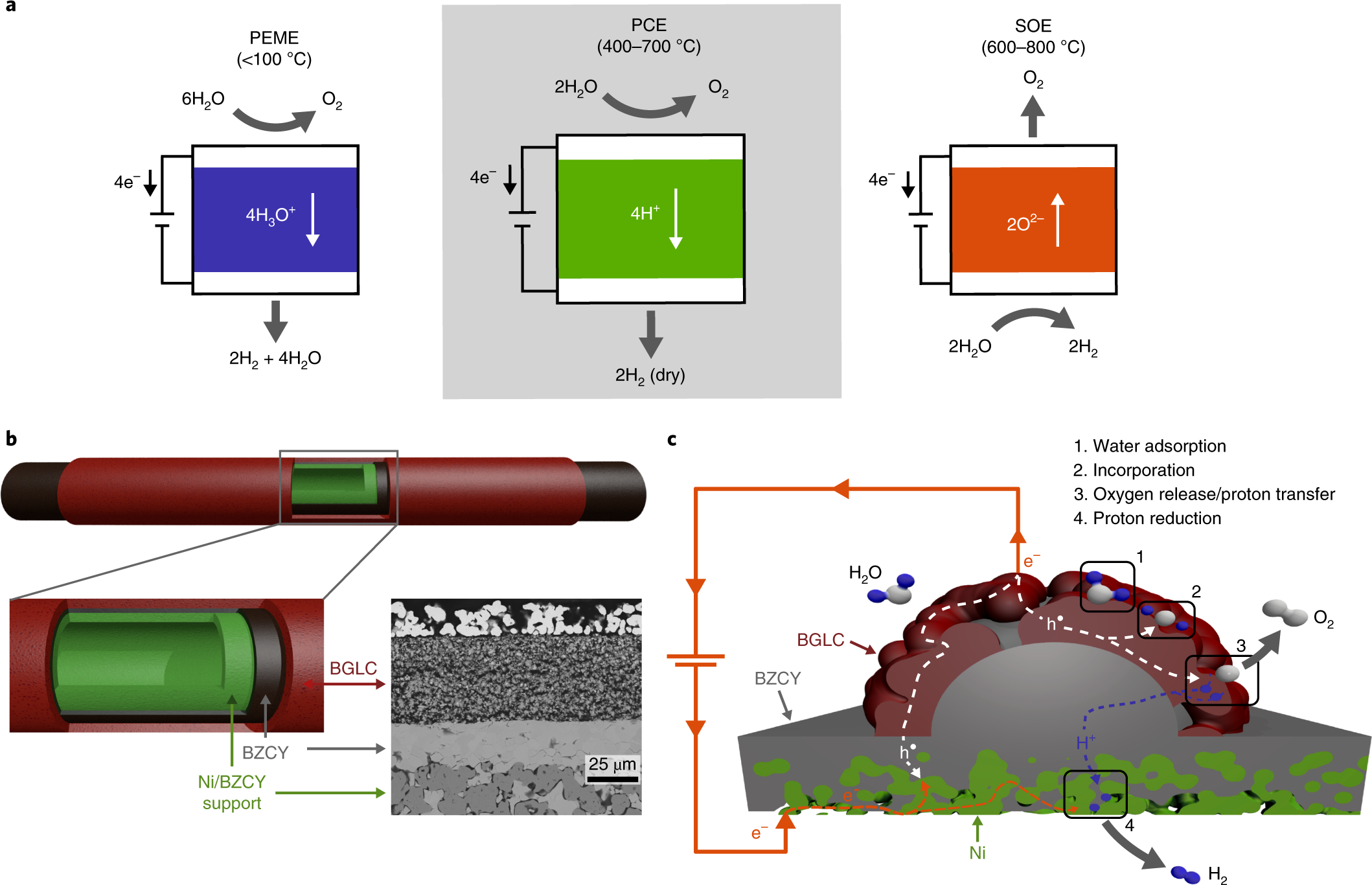 Mixed proton and electron conducting double perovskite anodes for